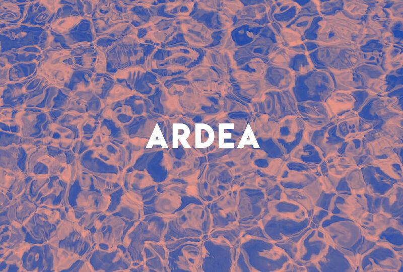 ARDEA blog post-09